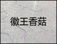 徽王香菇加盟