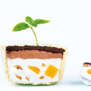 酒窝甜品加盟 提拉米苏绿意盆栽