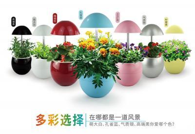 iGrow生长机加盟 全自动植物生长机