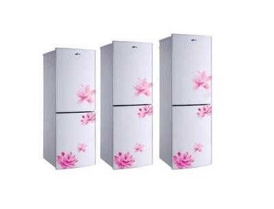长岭冰箱加盟 长岭冰箱加盟
