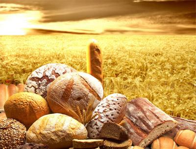 华之屋面包加盟招商