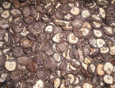 富升香菇加盟 富升香菇