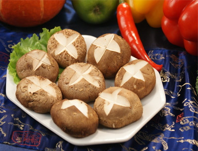 大山合香菇加盟 大山合香菇