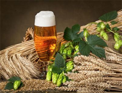 青冠啤酒加盟 青冠啤酒加盟