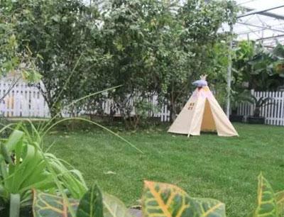 魔比斯花园加盟 魔比斯花园加盟