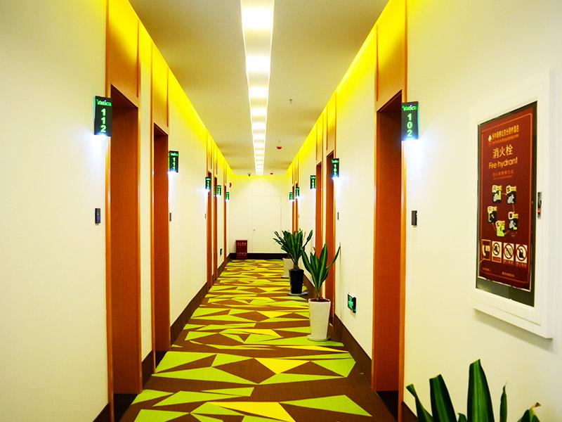 青皮树酒店加盟 1