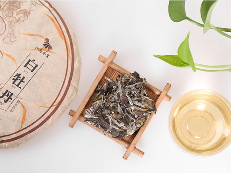 八马茶业加盟 八马茶业招商加盟