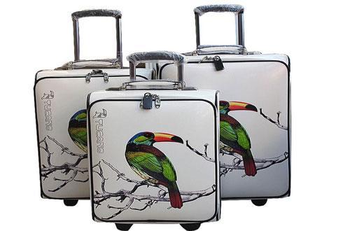 啄木鸟箱包加盟 啄木鸟箱包加盟