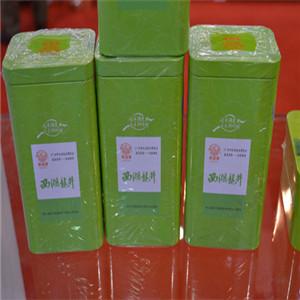 浙茶集团茶叶