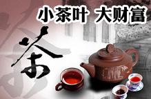 小茶叶 大财富之茶叶品牌项目推荐