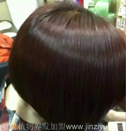金紫雨纯植物染发让染发不再掉色图片