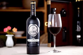 百利生红酒加盟