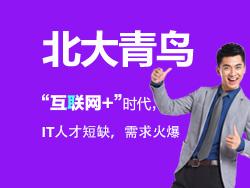 北大青鸟IT职业教育