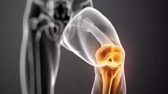 固髌减震||膝盖磨损不可逆,防护首选Qsupport娇诗博