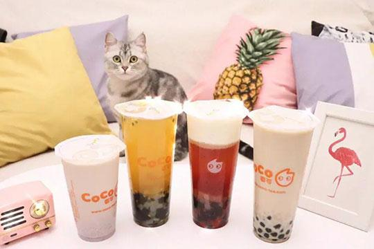 coco奶茶加盟项目怎么样?